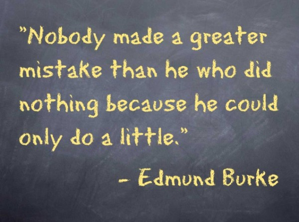 """Nobody made a greater mistake than he who did nothing because he could only do a little."" -Edmund Burke"